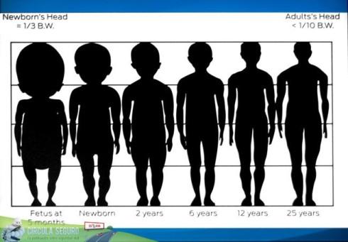 cuadro_proporciones_humanas